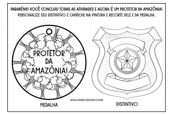 Dia da Amazônia: sugestão de história com atividade para Educação Infantil