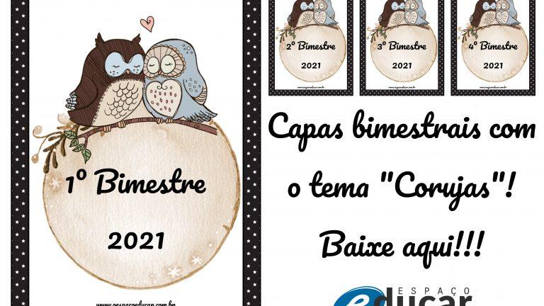 """Organização: capas bimestrais com o tema """"Corujas""""!"""